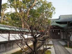鶴岡八幡宮 斎館前の梅  ちらほらと咲いています。