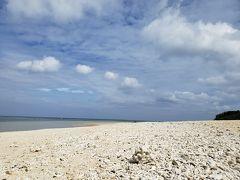 砂浜にはサンゴ礁の死骸がたくさん落ちています。 海が綺麗な場所はたくさんありますが、こういうのはやはり沖縄に来ないと見られないですよね~  ちなみにサンゴの持ち帰りは条例で禁止されているそうです。 危うく持って帰ってしまうところでした(笑)