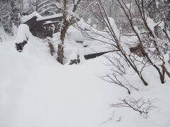 九頭龍社?に向かう道も雪で埋もれて行けず