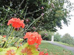 ブルク庭園にやって来ました。 ところどころ花も咲いていて、のんびりとした素敵な空間です。  私の他にも、何組か散歩中の方々が。