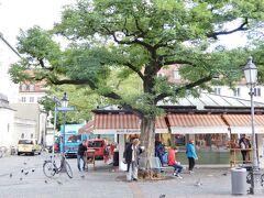 マーケットのテントが見えてきました!  ビール、ハチミツ、チーズ、お肉、野菜…などなど、ジャンルごとにまとまって出店しています。 観光客の方々もたくさん!