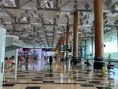 チャンギ空港第3ターミナルに到着しました。 いつ見てもきれいで大きくて圧倒されます。  帰るとはいえ、空港のターミナルはいつもなぜかワクワクします。