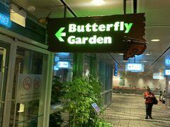 バタフライガーデンです。 以前来た時はたくさんの蝶がいましたが、今回は一羽だけしか見る事ができませんでした。夜だから寝てたのかな??