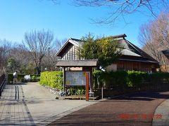 その広大な空地に隣接して赤羽自然観察公園 https://www.city.kita.tokyo.jp/d-douro/bunka/koenichiran/akabane.html があります。