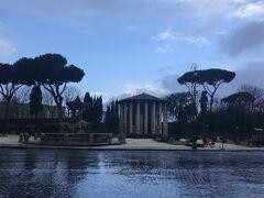 雨上がりの朝のヘラクレス神殿は綺麗でした。相変わらず人は全然いません。