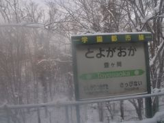 豊ヶ岡駅停車