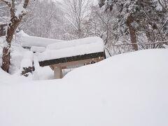 いよいよ奥社へ…………とはいかず 残念ながらその手前で雪が積もり先に進む事は出来なかったので遠くから手を合わせるだけで戻りました