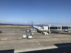 私が乗る那覇便は20分遅延とのお知らせが。私にとってはむしろゆっくり展望デッキでお迎えできて良かったですけどね。