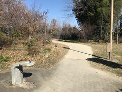 南沢氷川神社のお隣にある南沢水辺公園で休憩。コンビニでおにぎりを1つ買っていたのでお昼にしました。