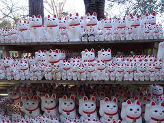 縁起物として祀られる招き猫たち。 2代藩主井伊直孝が豪徳寺の猫の手招きにより雷雨の難を免れたという言い伝えがあるそうです。