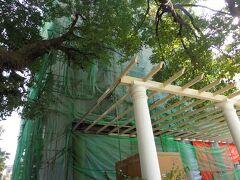 ネパ-ル最後の夜は、『旅猿』で東野・岡村が宿泊した同じGHを予約していました。 ただ、実際番組で泊まられてた旧棟は、このように建て替え中でした。