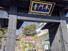 池上本門寺の総門へ突き当たりました
