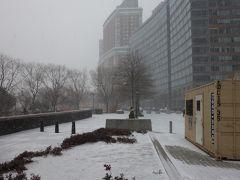ニューヨークは気温が低いのですぐに雪が積る