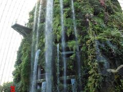 〇クラウドフォレスト ・時間:9~21:00 不定休 フラワードームと共通で28ドル ・エクスプローラーパスは料金に含まれます。 ・とにかく凄い ・すべて本物の植物 ・高さ35Mの滝です ・一番上までエレベーターで上がり、下ってくる作りです 内部の様子はこちらを参考にしてください。 https://youtu.be/B_leDhZPc6U