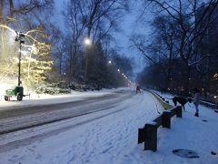雪景色のセントラルパークよいかと思い雪の中を散策