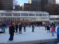 昼間のアイススケート