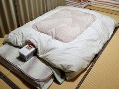 知人の方に王寺駅でピックアップして頂き、生駒市お家に泊まらせて頂きました。