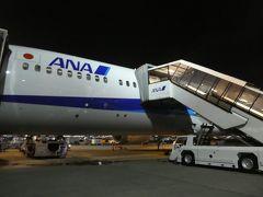 やっぱりエアアジアよりもANAの方がシートピッチが広く、快適でした。 羽田に到着。機体は沖止めでした。  これで旅行記は終わりです。 最後までお読みいただき、ありがとうございました。