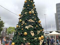 10時間半という長いフライトを終え、シドニー到着!!今日はクリスマスイブ?大きなクリスマスツリーが出迎えてくれました。