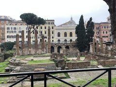 それから、今回楽しみにしてたトッレ・アルジェンティーナ広場へ。どこ?って感じだけど、ローマの自由ネコが集まる遺跡にしてネコの集会所。