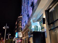 夜になって気が付きました。トナカイの電飾。