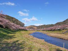 道の駅下賀茂温泉湯の花に車を停めて、近くを歩きました。