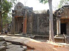 タ・プローム 樹木が石材に巻き付き、神秘的な雰囲気の遺跡です。