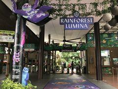ゲート付近は、「あれ?こっち動物園で合ってるよね?!」と挙動不審になっちゃうくらい『RAINFOREST LUMINA』一色。シンガポール動物園の名前すらありませんΣ(゚д゚;) レインフォレストルミナは、シンガポール動物園の夜のアトラクション。園内の一部をイルミネーションやプロジェクションマッピングでライトアップしているそうです。動物たちは寝室で休んでいるので会えませんけどね。 チケットを購入した時に、これもセットになったプランにするか悩みました。 今回の旅行、飛行機は往復深夜便で毎日のように朝早くから歩き回り、夜のイベントはクレーンダンス(昨日)とナイトサファリ(今日)が確定済み。さすがに、これ以上ハードな日程にする勇気はなくて諦めました。