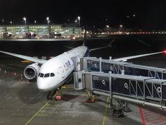 ミュンヘンからはANA218便に乗り継ぎ、羽田へ。機体番号はJA880Aで羽田からの往路便と同仕様の機に搭乗します。