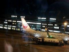 なかなか着陸できず、那覇空港に着いた時には真っ暗になっていました。