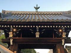 13<即成院 山門> 総門のすぐ脇に、泉涌寺の塔頭の一つ「即成院」があります。 山門の中央に鳳凰像を見付け、珍しいので思わず「カシャ」。 今日は、なぜか鳳凰に縁があるようです。