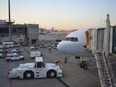 定刻通りNRT到着です。入国審査の前に、台湾・香港便の人は別レーンを通る検疫がありました。意味があるのかは分かりません(苦笑