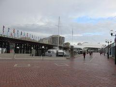 ダーリングハーバーにやってきました。 ちょっと前まで雨が降っていたみたいで路面が濡れていました。