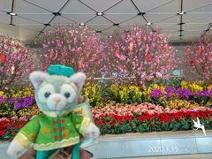 香港国際空港に到着  旧正月の一週間前と言うことで、 空港内は旧正月の賑々しい飾り付けに…