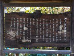 12:30 知立公園 愛知県知立市西町神田12