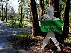 田主丸は、巨峰の生産が盛んな町 こちらでは赤・白の巨峰ワインの他、ブルーベリー、あまおう、甘夏、 キウイ、柿など様々な果物で造った個性豊かなワインがあります