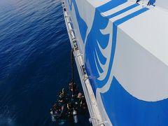 体験ダイブは4名程度のグループ分けがされ、3グループ程度ずつ海に入ってきます。