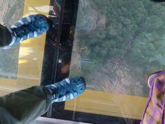 いきなりシーニック・スカイウエイに乗り込みました。  全面ガラス張りなので、ちょっとドキドキ