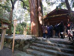 多賀宮は、外宮に所属する4つの別宮のうちで一番大きく、正宮に次ぐ大きさです。正宮では主に日本全体の幸福を願うとも言われ、個人的なお願いはここ多賀宮で願うのが良いとも言われています。 池にかかる亀石(かめいし)を渡り、98段の石段を上った小高い丘の上にあります。  こ祭神:トヨウケノオオミカミの荒御魂(あらみたま)  ご祭神は、トヨウケノオオミカミの荒御魂(あらみたま)になります。神様の御魂のおだやかな働きを、「和御魂(にぎみたま)」といい、荒々しく格別に顕著なご神威をあらわされる御魂の働きを、「荒御魂(あらみたま)」といいます。