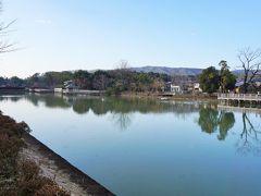 八条ケ池は、長岡天満宮境内の東側に広がる美しい池。 キリシマツツジや桜など季節の花も楽しむことができます。