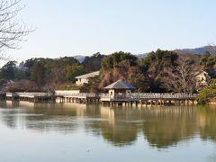 池北側のヒノキ造の水上橋は、名前のとおり水の上を歩くことができる散歩道。 気持ちの良い散策ができます。
