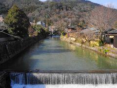 中ノ島橋から桂川用水を望む、美しい風景です。