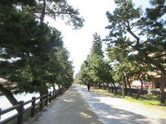 1.5㎞程の間に600本もの松が植えられている草加松原遊歩道。 遊歩道の両側には、江戸時代の草加宿の様子を知ることができる史跡が数多く残っています。遊歩道の中央は石畳になっていますが、石畳の両側は土の歩道になっていて歩きやすくなっています。松並木の長さは、参勤交代が行われていた時の大名行列の長さが基準になっているとのことでした。江戸時代の旅人になった気分で散策が楽しめるエリアです。
