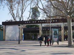 で将軍像の前がバルセロナ動物園。 1892年に開園した古い歴史を持つ動物園で13ヘクタール(東京ドーム3個分くらい)にも及ぶ敷地の中には400種2200以上の動物や鳥類が飼育されているんだとか。 シウタデリャ公園の敷地の70%が実は動物園。 つまり広大な公園だけど動物園に入らなければそれほど歩くこともないのかな。