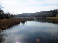 まずは、一碧湖に立ち寄りました。 何も無いなと思いながら湖畔に行きます。 冬枯れの湖畔は少し寂しい感じです。