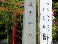 次に来宮神社に向いました。 驚く位の人出で何かお祭りでもやっているのかと思いました。