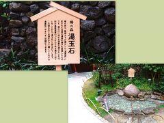 椿の湯・湯玉石  道後温泉別館 飛鳥乃湯泉の中庭には道後温泉開運めぐりスポットの一つ「湯玉石」があります。 椿の森は、聖徳太子が建立した「温泉碑」に記された当時の道後の様子を表現したものです。 湯の川に流れる温泉の源の丸い石は形が道後温泉のシンボルである湯玉に似ていることから「湯玉石」と呼ばれています。 この湯玉石にお湯をかけて願いごとをする湯真珠祈願があります。  願いが叶うかどうかは別として、「5月にオランダに行けますように」とお願いして来ました。