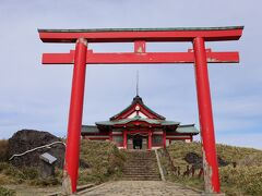 箱根神社に到着しお参り。