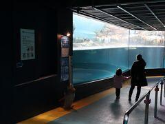 12時頃、箱根山を後にし、ロープウェイ近くの箱根園水族館へ。 都心の水族館と違って空いているのがいいですね。