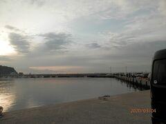 豊浜 漁港 イワシ